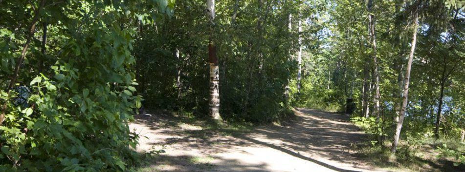 Parc_Ile_Melville_Sentiers